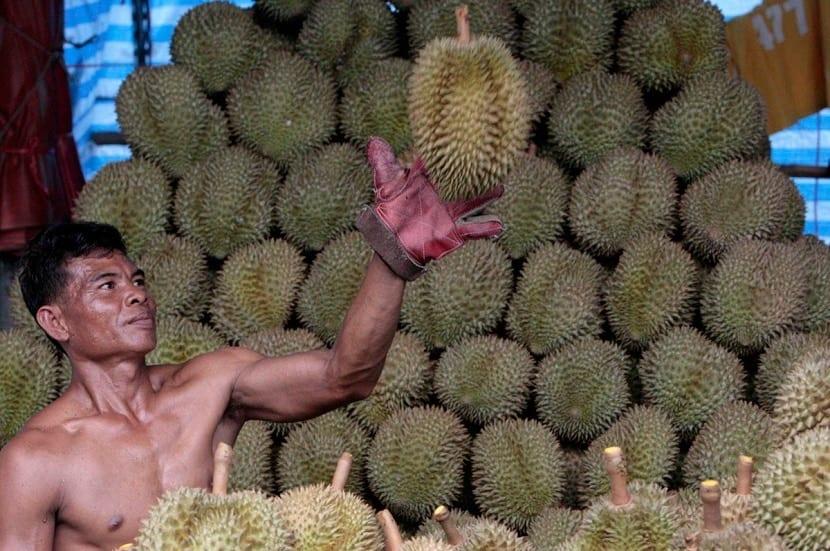 Comprando el Durián en un mercado
