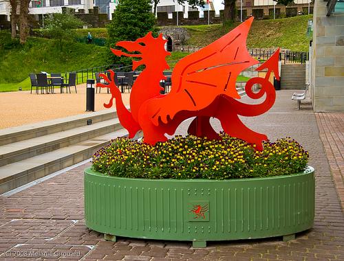 dragon-gales2