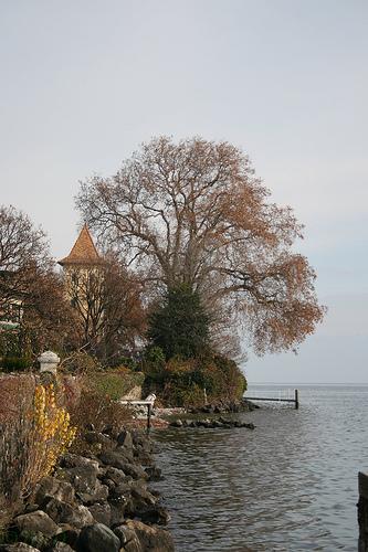 lagos-suiza2