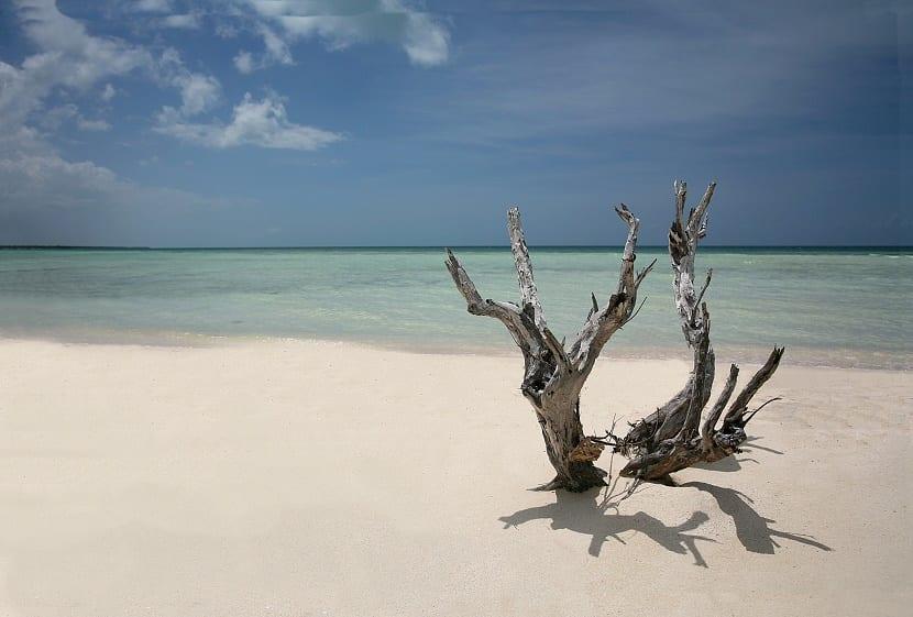 playa nudista en dinamarca desierta