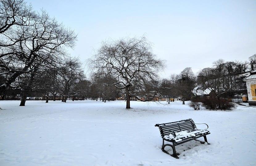 Parque de Estocolmo nevado