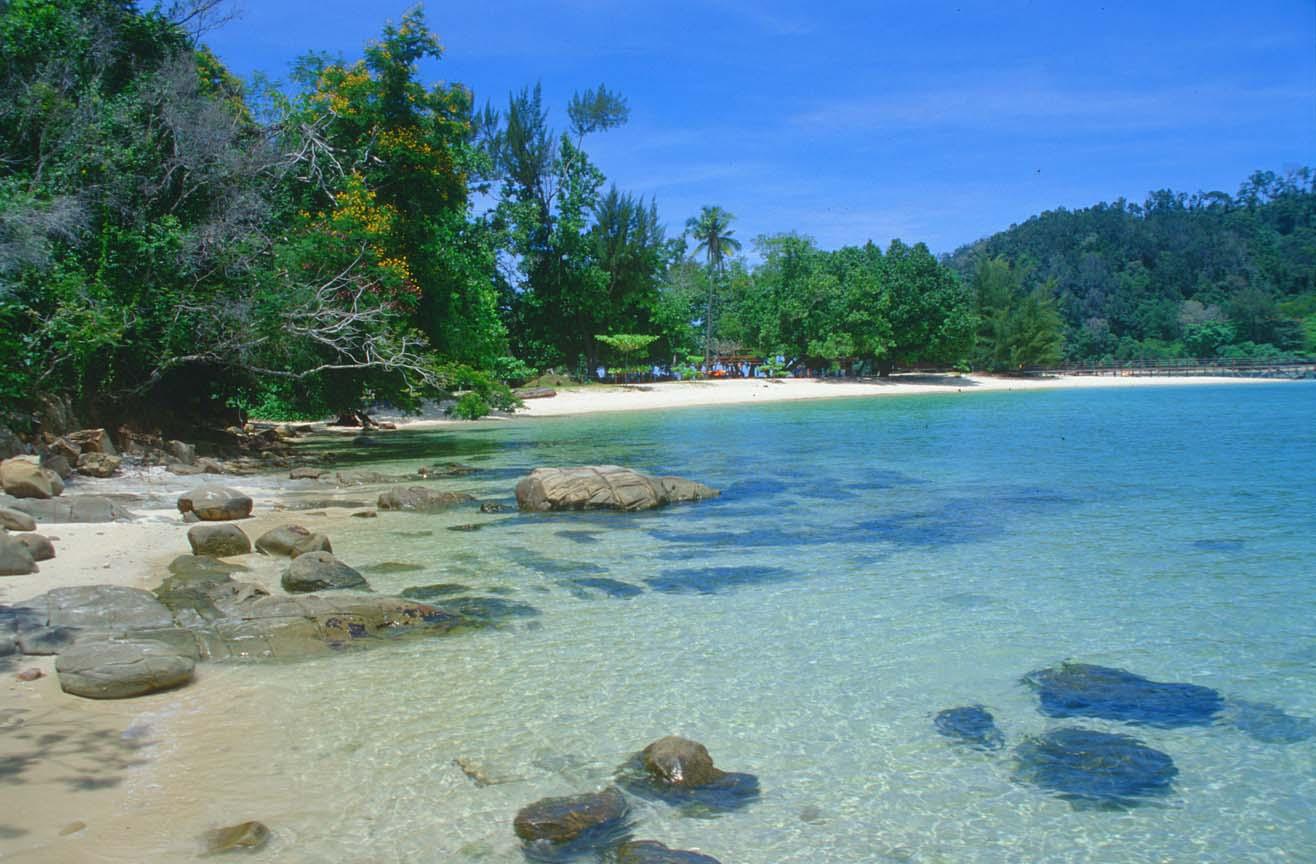 Free Tropical Beach