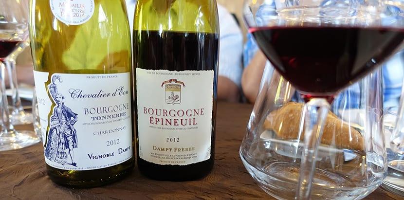 vinos-de-borona