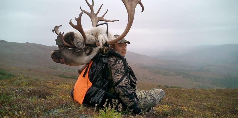 caza-en-alaska