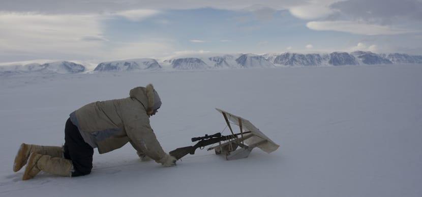 caza en polar