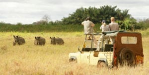 Turismo Cinegetico kenia
