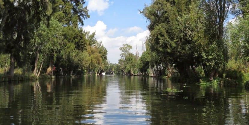 Lago Xochimilco
