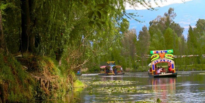 Paseo por Xochimilco