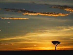 Anochecer en África