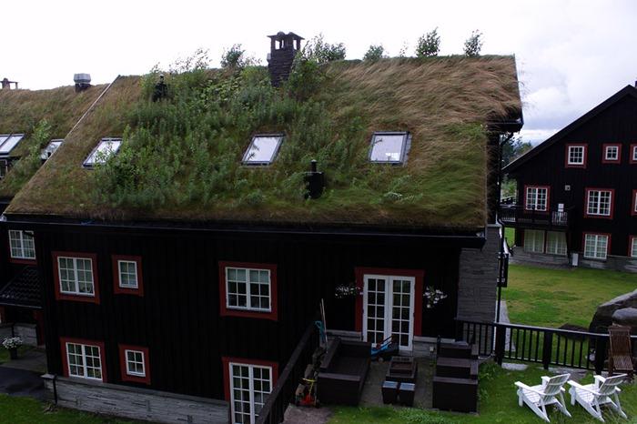 Las casas de techos vegetales en noruega for Casas en noruega