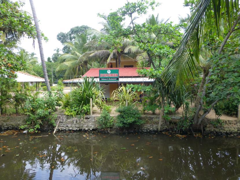 Restaurantes baratos en Mirissa