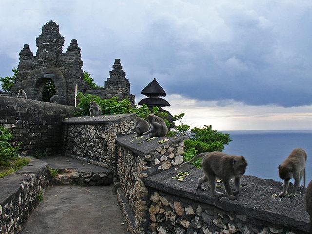 El Bosque de los Monos en Bali