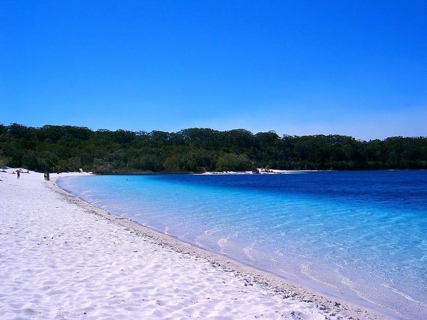 Playa de Fraser Islands