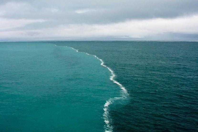 Mares de Skagen