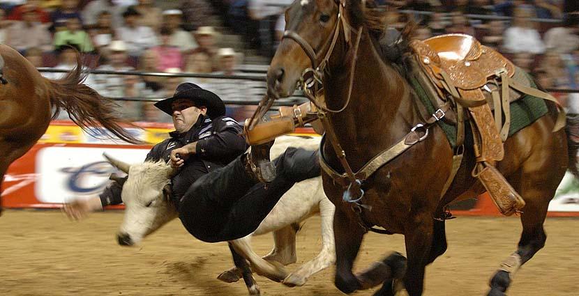 Rodeo norteamericano
