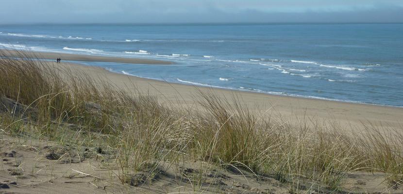 Playa de Bloemendaal