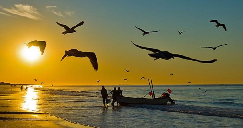 La Antilla