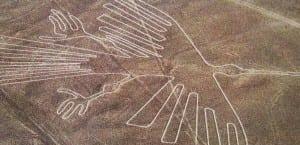 Nazca ave