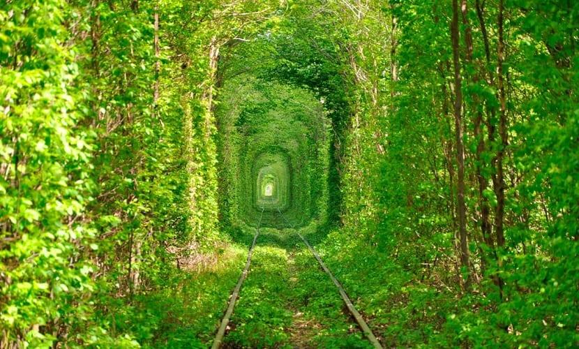 11 lugares tunel