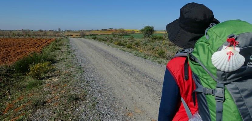 Camino Santiago Peregrinos