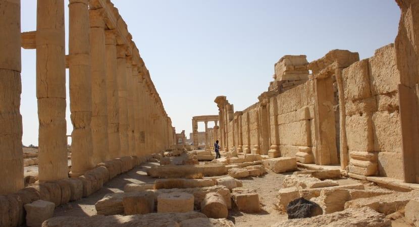 Palmyra Siria calle