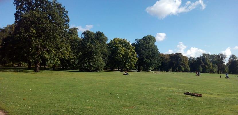 Hyde Park, algo que ver en Londres gratis