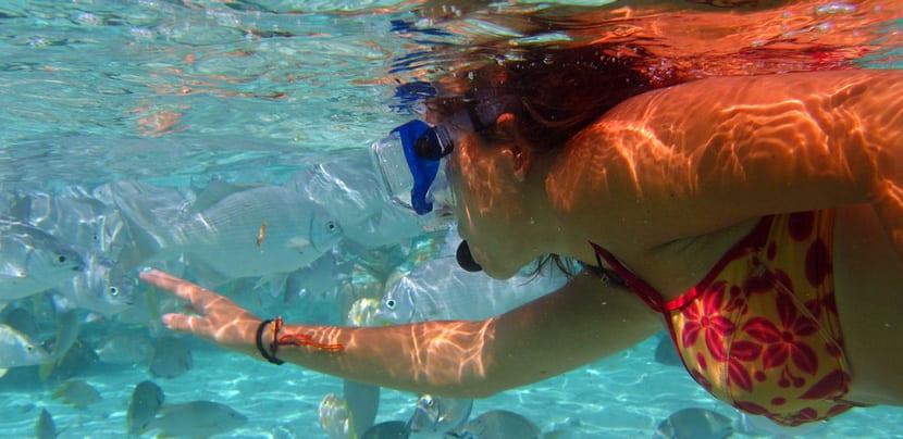 Snorkel en Cayo Largo