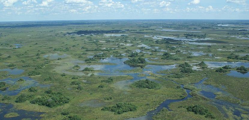 Viajar en 2016 a Botswana