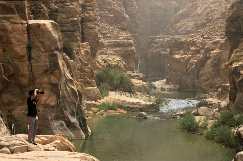 wadimugib