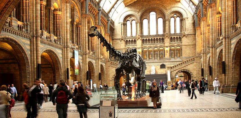 Museo Británico de Ciencias