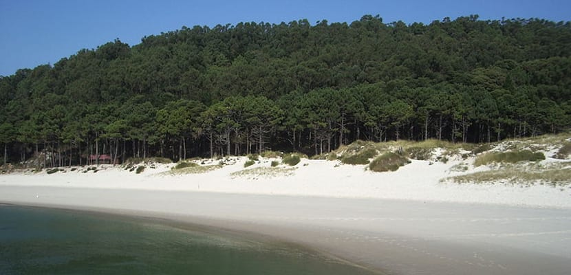 Playa de Rodas en Cíes