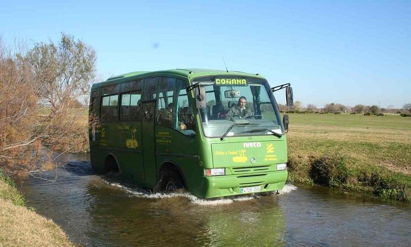 Escapada al Parque Nacional y Natural de Doñana 4