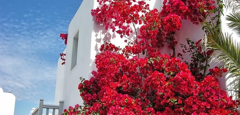 Balcones en Mykonos