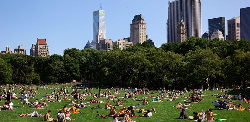 Nueva York en verano