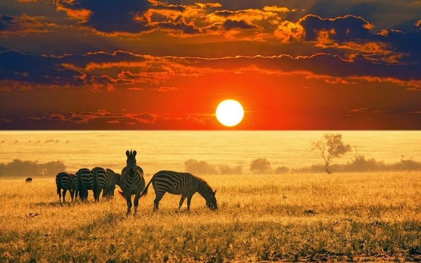 africa-la-sabana
