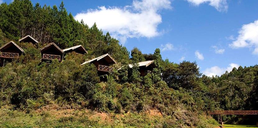 campamento-saha