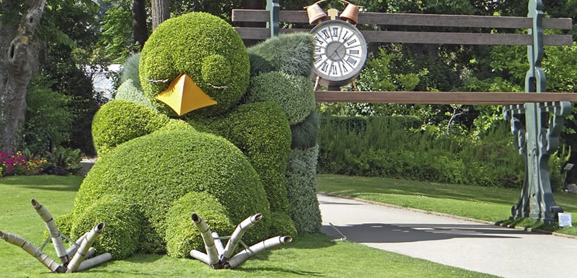 Jardín de las plantas
