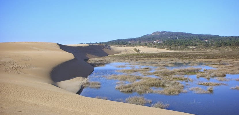 Dunas de Corrubedo