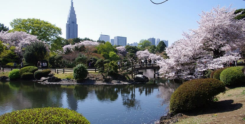 Recomendaciones TOKYO, JAPÓN - Página 16 Jardin-shinjuku