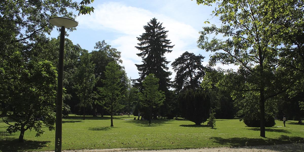 Kannenfeld park