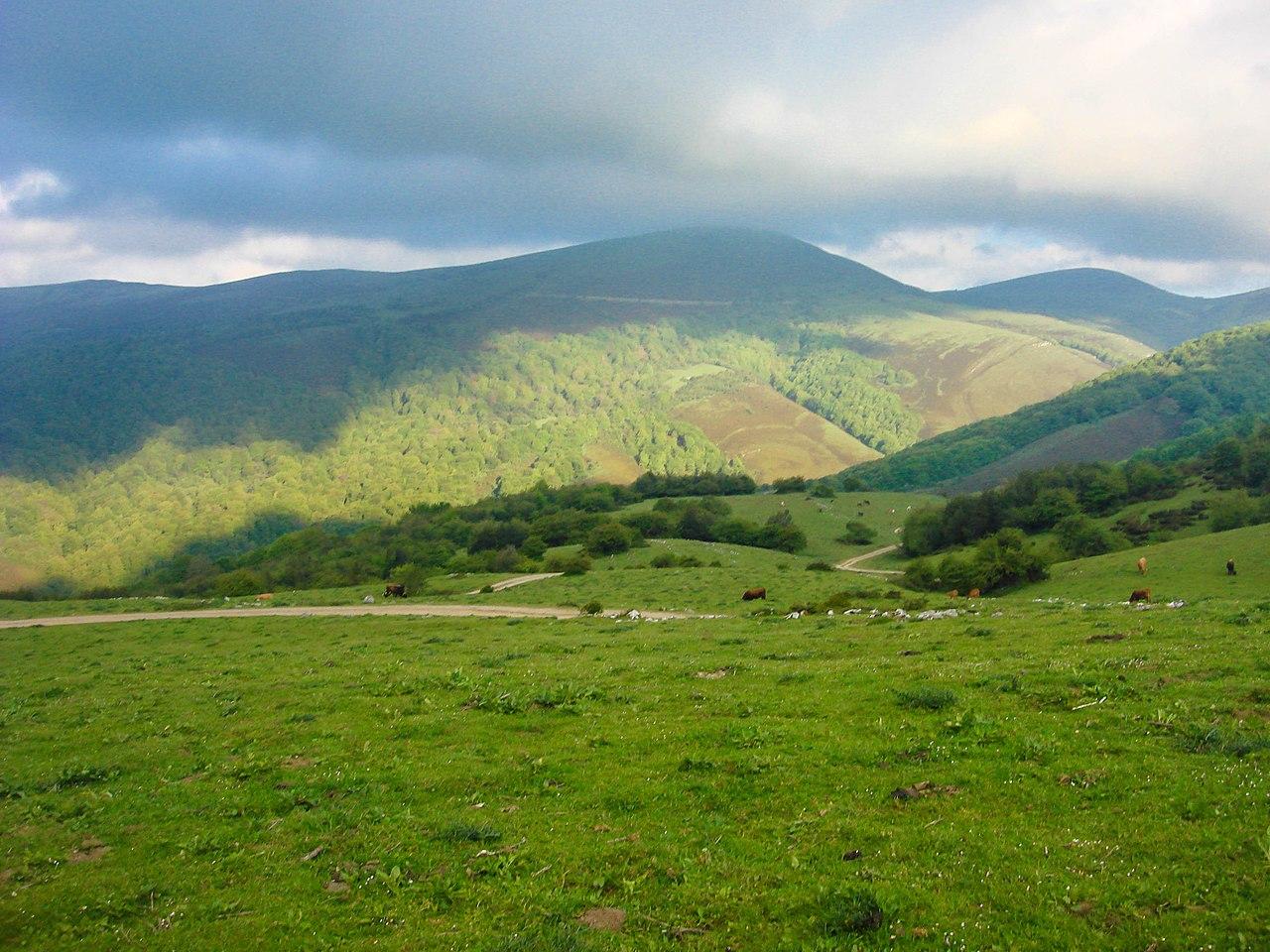 Imagen del parque natural del Saja-Besaya