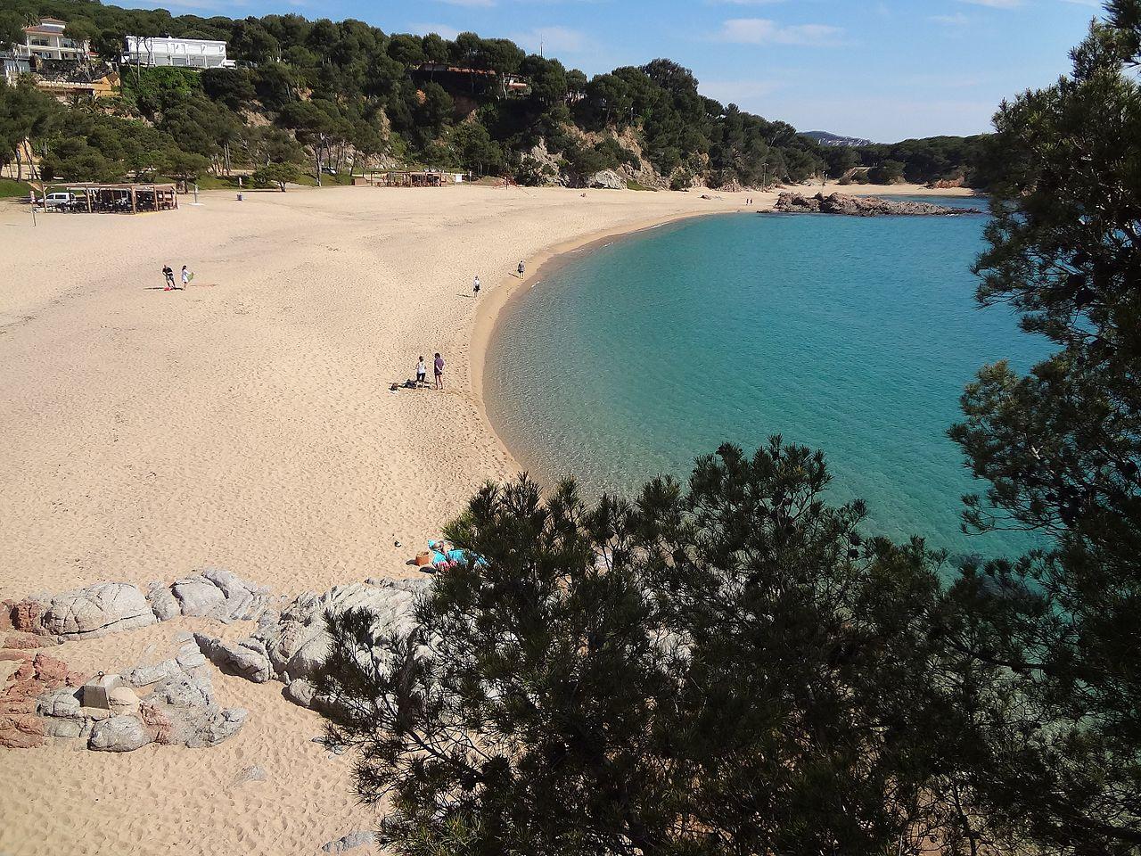 Vista de la playa de Sa Conca